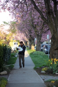 Daddy taking me for a walk down our blossom-lined street to try and settle me...