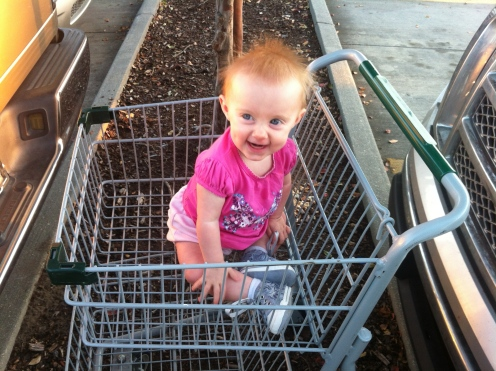 My New Orleans highlight: the Whole Foods shopping cart!